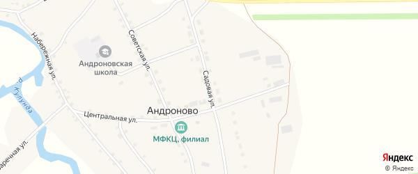 Садовая улица на карте села Андроново с номерами домов