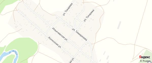 Улица Тимирязева на карте села Локтя с номерами домов