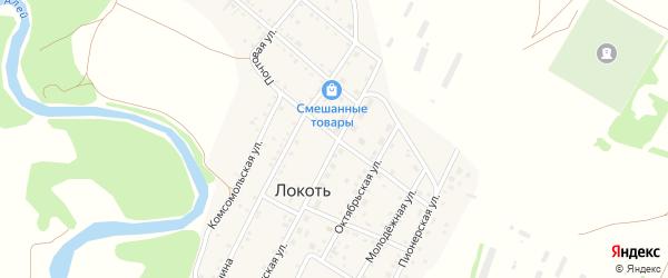 Почтовая улица на карте села Локтя с номерами домов