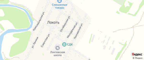 Молодежная улица на карте села Локтя с номерами домов