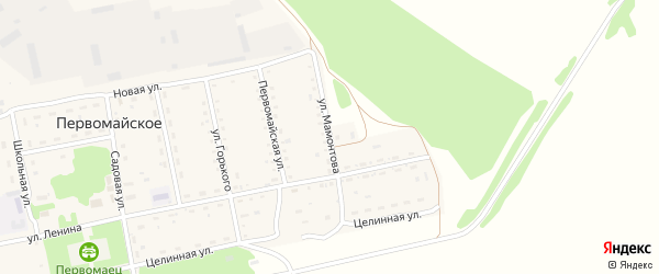 Улица Мамонтова на карте Первомайского села с номерами домов