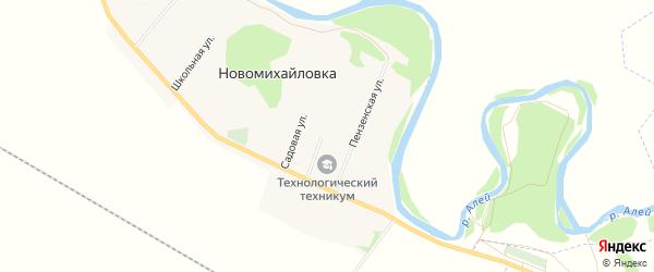Карта села Новомихайловки в Алтайском крае с улицами и номерами домов