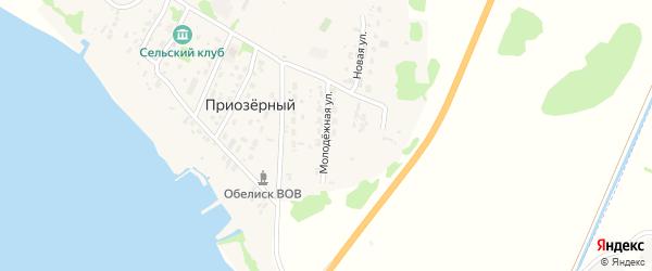 Молодежная улица на карте Приозерного поселка с номерами домов