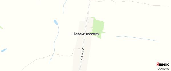 Карта поселка Новоматвеевки в Алтайском крае с улицами и номерами домов