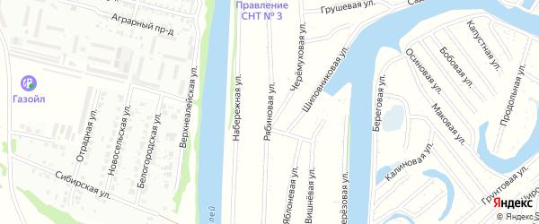 Рябиновая улица на карте садового некоммерческого товарищества N 12 с номерами домов