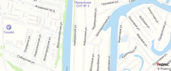 Рябиновая улица на карте садового некоммерческого товарищества N 1 с номерами домов