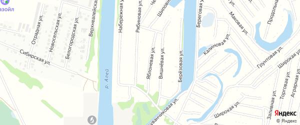 Яблоневая улица на карте садового некоммерческого товарищества N 14 с номерами домов