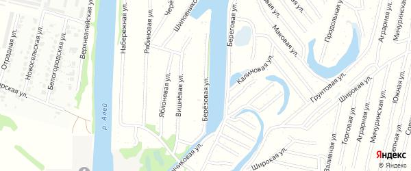 Березовая улица на карте садового некоммерческого товарищества N 2 с номерами домов