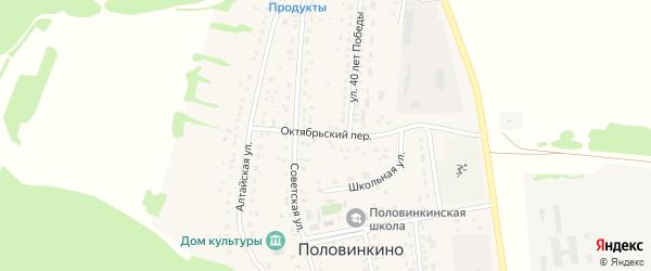 Октябрьский переулок на карте села Половинкино с номерами домов