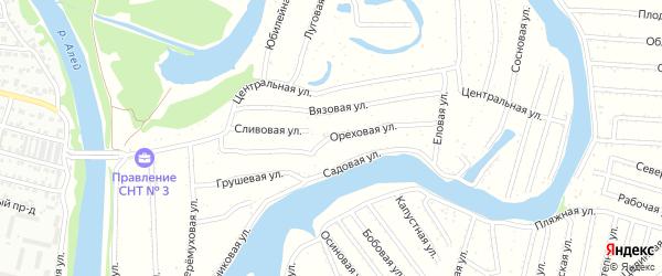Ореховая улица на карте садового некоммерческого товарищества N 3 с номерами домов