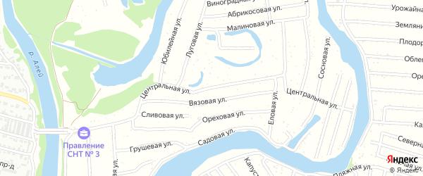 Центральная улица на карте садового некоммерческого товарищества N 3 с номерами домов