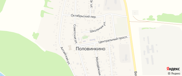 Степная улица на карте села Половинкино с номерами домов