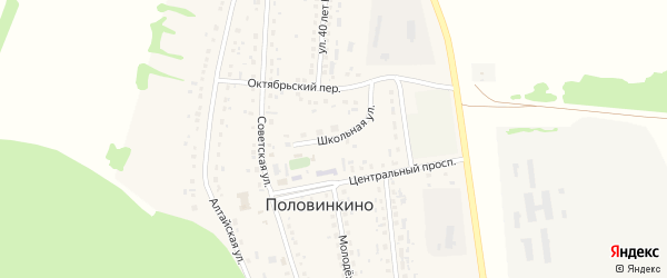 Школьная улица на карте села Половинкино с номерами домов
