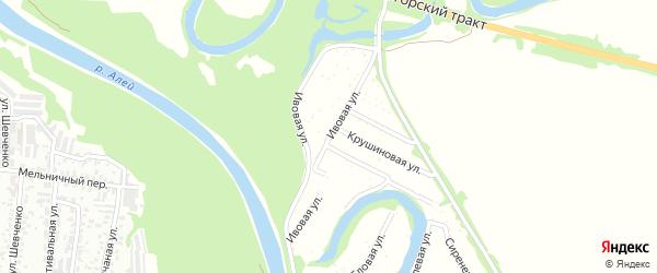 Ивовая улица на карте садового некоммерческого товарищества N 15 с номерами домов