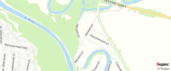 Ивовая улица на карте садового некоммерческого товарищества N 8 с номерами домов