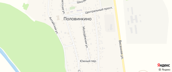 Молодежная улица на карте села Половинкино с номерами домов