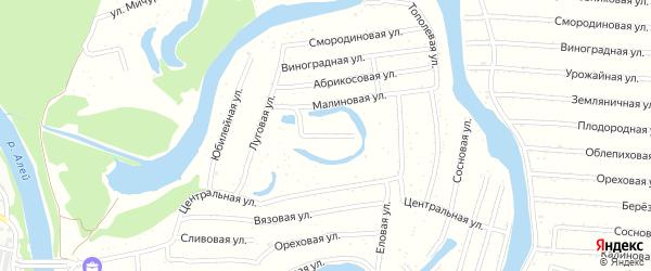 Ягодная улица на карте садового некоммерческого товарищества N 13 с номерами домов