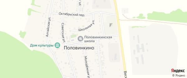 Центральный проспект на карте села Половинкино с номерами домов
