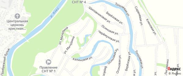 Черемуховая улица на карте садового некоммерческого товарищества N 8 с номерами домов