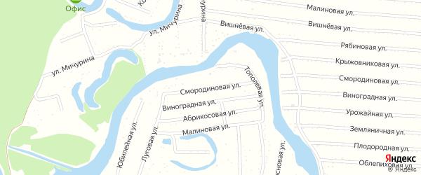 Смородиновая улица на карте садового некоммерческого товарищества N 7 с номерами домов