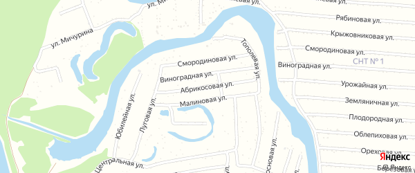 Абрикосовая улица на карте садового некоммерческого товарищества N 9 с номерами домов