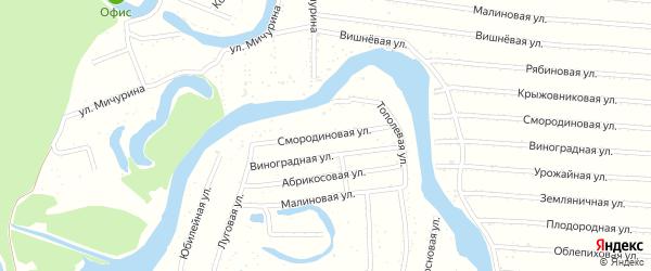 Смородиновая улица на карте садового некоммерческого товарищества N 3 с номерами домов