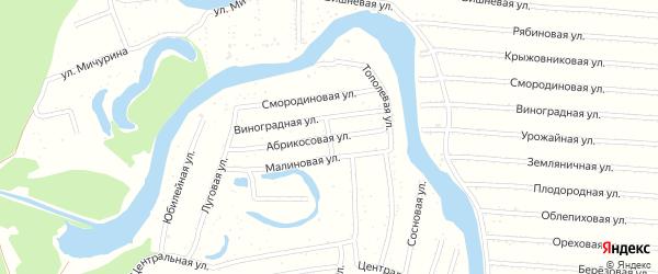 Лозовая улица на карте садового некоммерческого товарищества N 3 с номерами домов