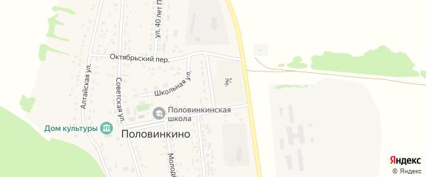Стадионная улица на карте села Половинкино с номерами домов
