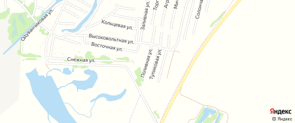 Поливная улица на карте садового некоммерческого товарищества N 3 с номерами домов