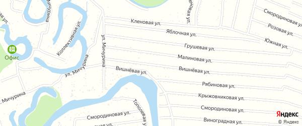 Вишневая улица на карте садового некоммерческого товарищества N 16 с номерами домов
