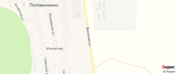 Весенняя улица на карте села Половинкино с номерами домов