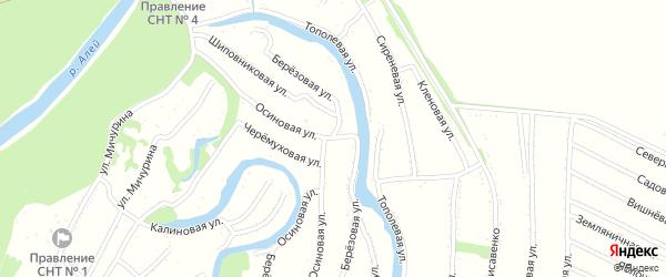 Березовая улица на карте садового некоммерческого товарищества N 1 с номерами домов