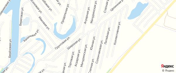 Мичуринская улица на карте садового некоммерческого товарищества N 3 с номерами домов
