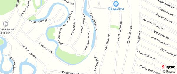 Рябиновая улица на карте садового некоммерческого товарищества N 6 с номерами домов