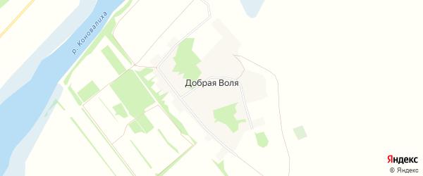 Карта поселка Доброй Воли в Алтайском крае с улицами и номерами домов