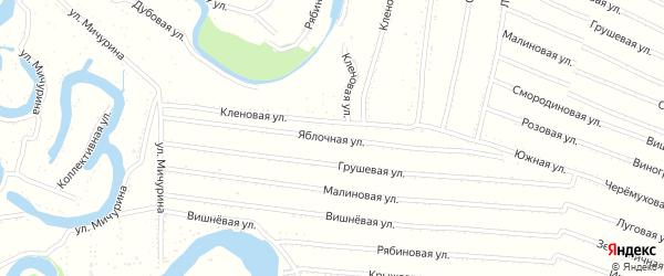 Яблочная улица на карте садового некоммерческого товарищества N 9 с номерами домов