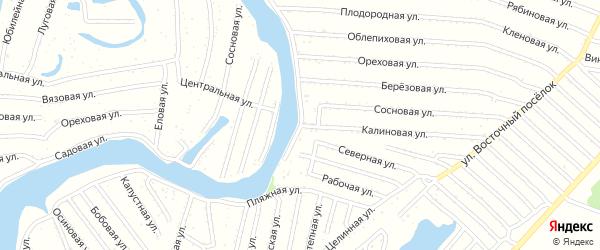 Калиновая улица на карте садового некоммерческого товарищества N 16 с номерами домов