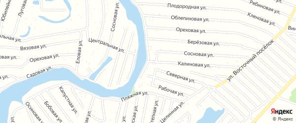 Калиновая улица на карте садового некоммерческого товарищества N 7 с номерами домов
