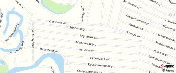 Грушевая улица на карте садового некоммерческого товарищества N 7 с номерами домов