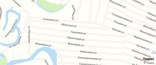 Грушевая улица на карте садового некоммерческого товарищества N 13 с номерами домов
