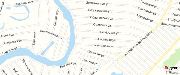 Сосновая улица на карте садового некоммерческого товарищества N 15 с номерами домов