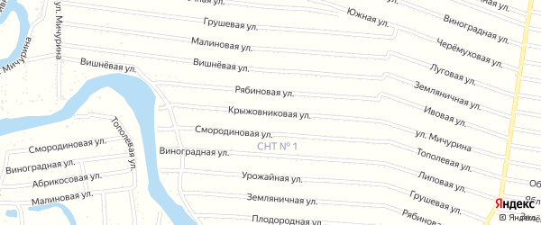 Крыжовниковая улица на карте садового некоммерческого товарищества N 1 с номерами домов