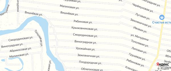 Смородиновая улица на карте садового некоммерческого товарищества N 1 с номерами домов
