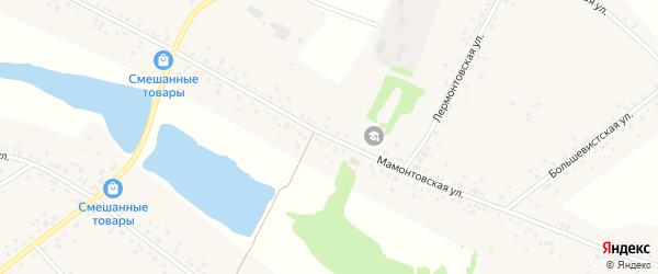 Мамонтовская улица на карте села Романово с номерами домов