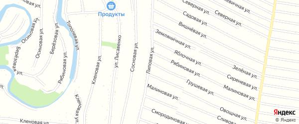 Липовая улица на карте садового некоммерческого товарищества Полета с номерами домов