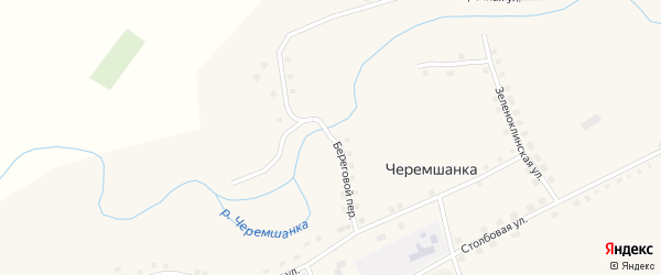 Береговой переулок на карте села Черемшанки с номерами домов