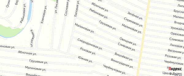 Крыжовниковая улица на карте садового некоммерческого товарищества N 11 с номерами домов