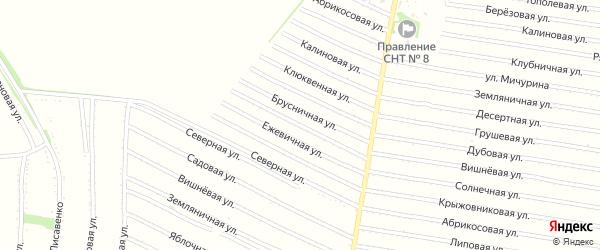 Ежевичная улица на карте садового некоммерческого товарищества N 13 с номерами домов