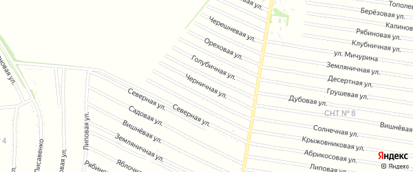 Ежевичная улица на карте садового некоммерческого товарищества N 7 с номерами домов