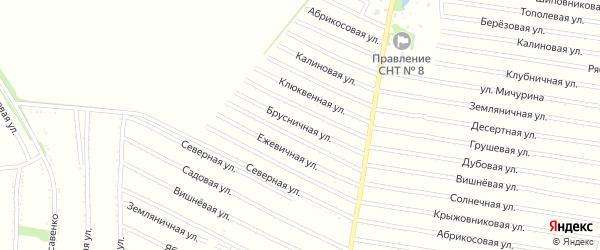 Черничная улица на карте садового некоммерческого товарищества N 7 с номерами домов